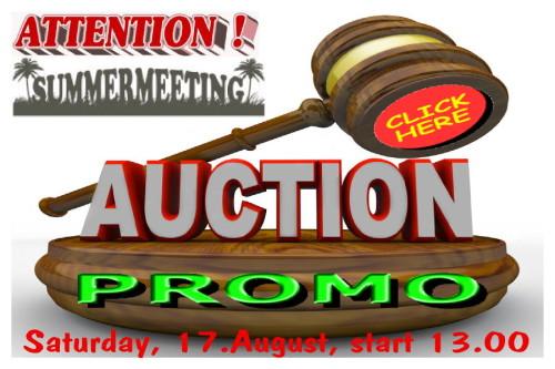 Summermeeting 2013 - Auctions promo