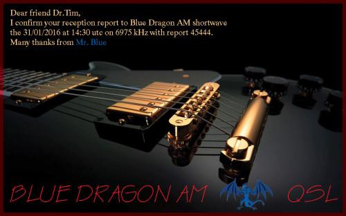 B.DragonDr.Tim