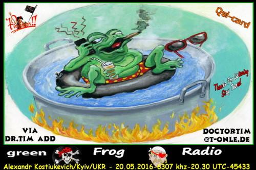 Radio Green Frog